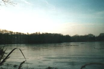 Kraenepoel covered with ice